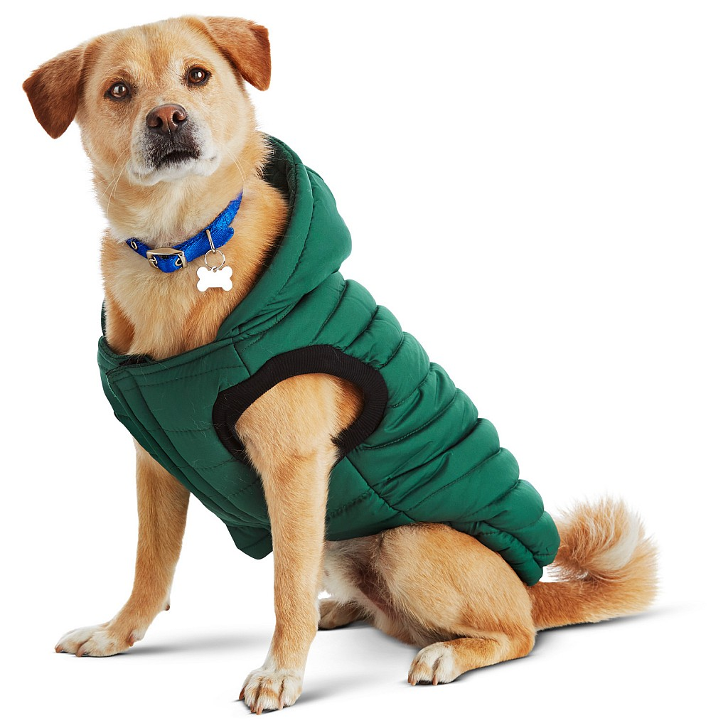 Good2Go Green Quilted Dog Parka