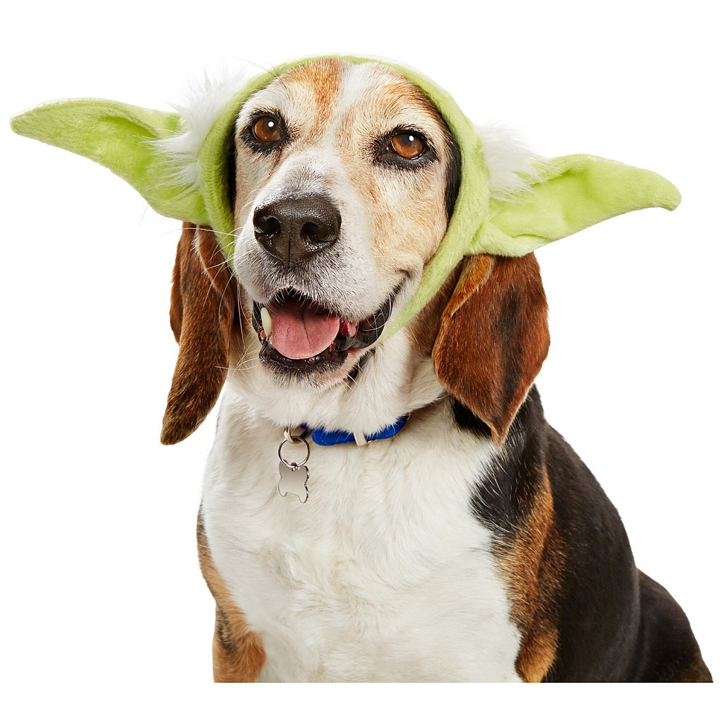 STAR WARS Yoda Dog Headband